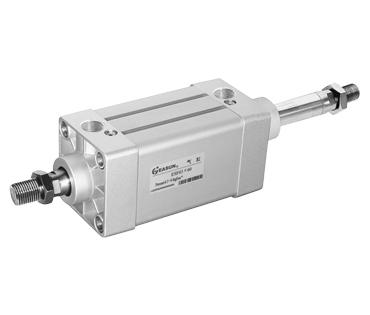 ESFD标准气缸(双伸杆型)